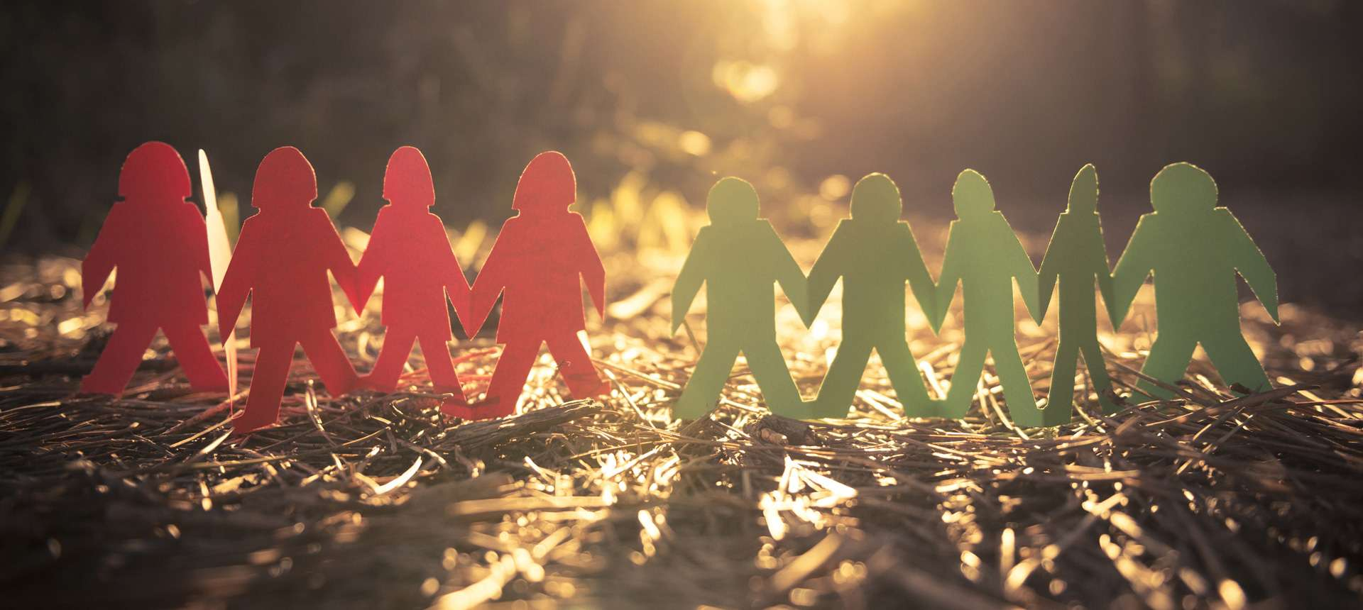 Le Buddy System : amitiés à l'international