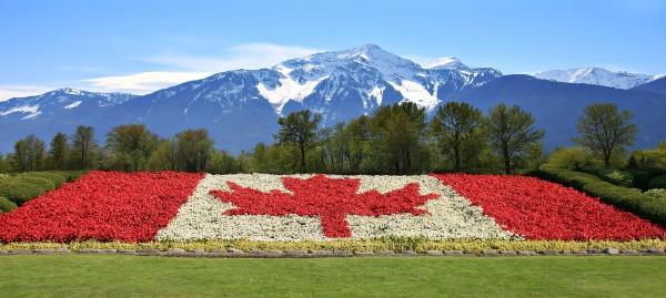Webconférence : voyager et travailler au Canada